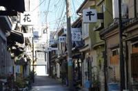 松島新地(松島遊郭)の写真